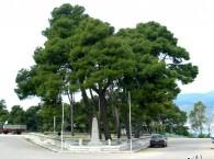 Rizospastwn monument