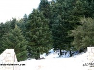 Enos National Park