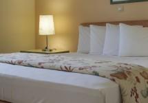 accommodation-(9).jpg